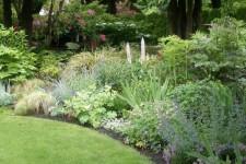 ogrod-przed-zima